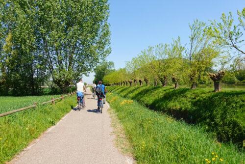 Dai Colli all'Adige: Alla scoperta dei Colli Euganei